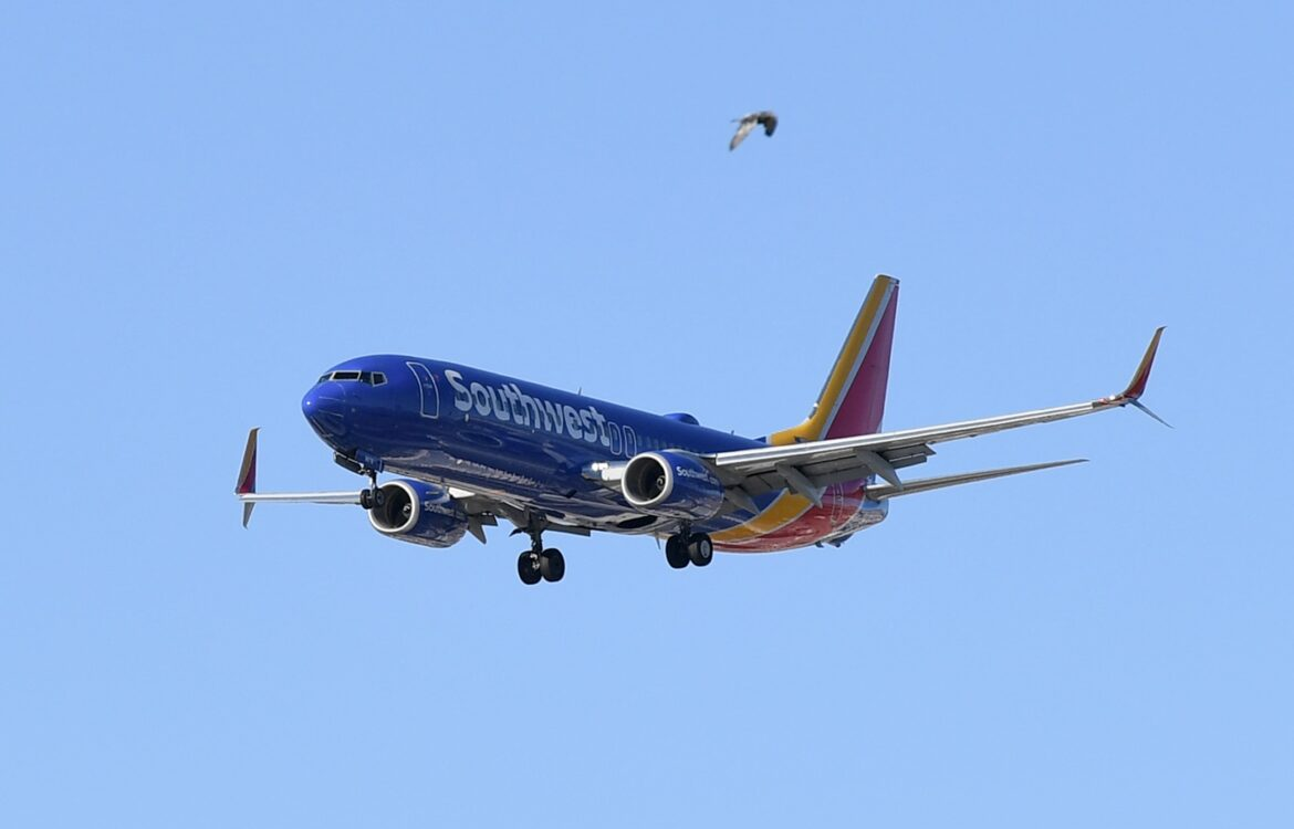 The TravelCenter - Booking 24 hours a day - Southwest plans fall capacity cuts, will leave...