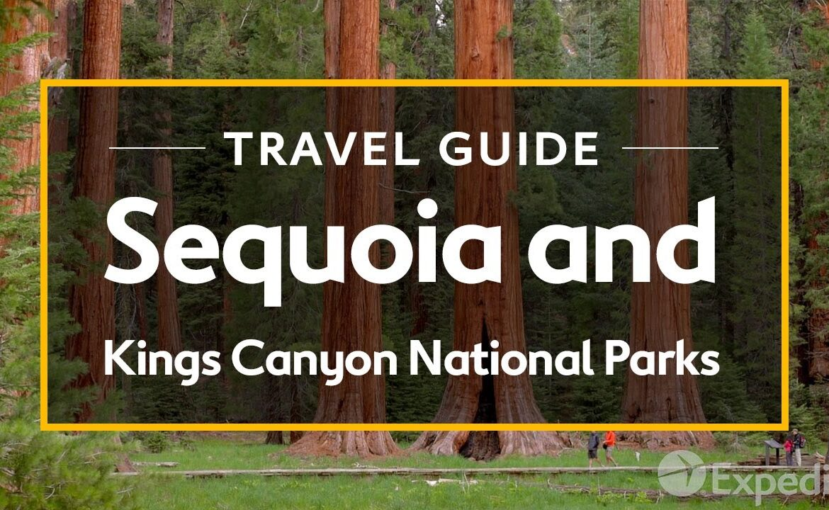 The TravelCenter - Booking 24 hours a day - Sequoia and Kings Canyon